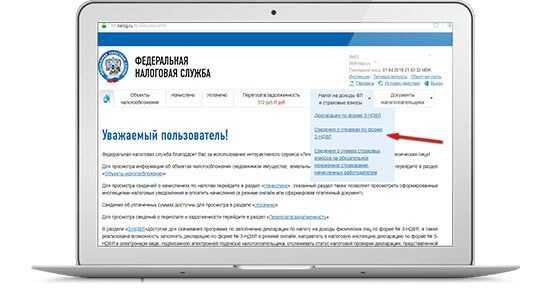 Оформление справки 2-НДФЛ через портал Госуслуги: пошаговая инструкция, особенности получения